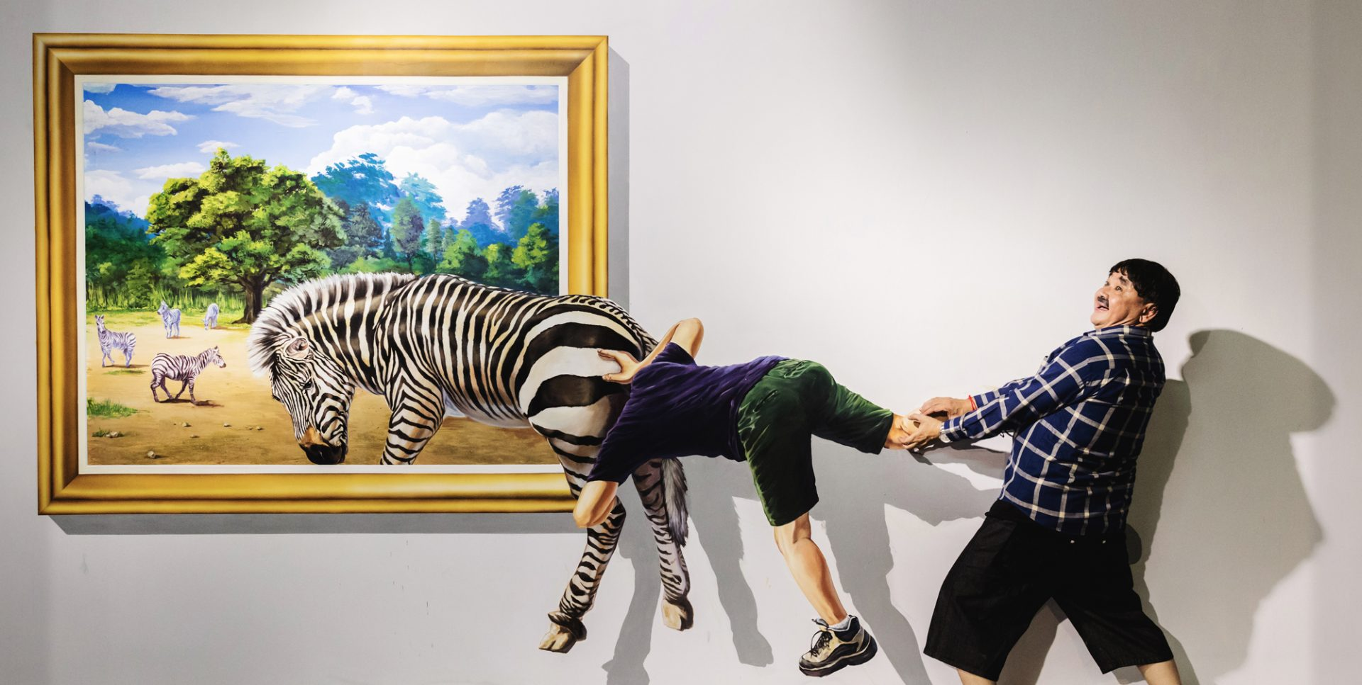 3D Art World Phnom Penh -Zebra